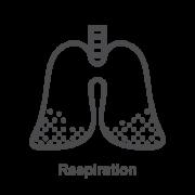 Kvėpavimo atkūrimui